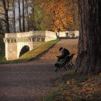 осень :: sv.kaschuk