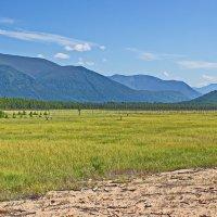 Долина реки Фролиха :: val-isaew2010 Валерий Исаев