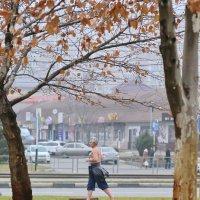 Летящей походкой он скрылся в конце декабря :: Нина Сигаева