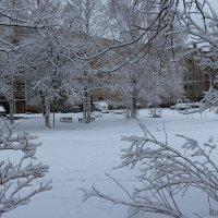 зима :: Laryan1