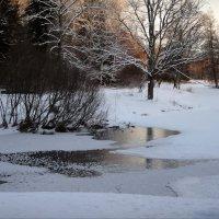 очарование зимнего вечера :: sv.kaschuk