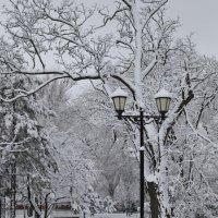Этюд с фонарём 3 :: Андрей Lyz