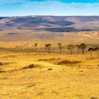 Иудейская пустыня (2) :: Тарас Леонидов