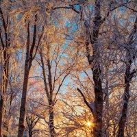 Северный закат :: Альберт Сархатов