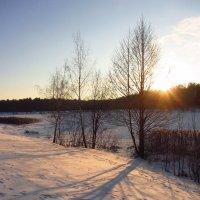 IMG_9448 - С Рождеством, друзья и просто приятные мне люди! :: Андрей Лукьянов