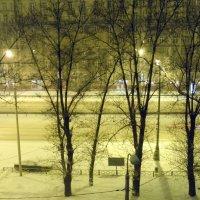 Ночной снегопад. :: Елена