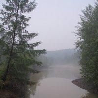 Туман. :: Сергей Щелкунов