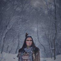 Шаман Лу Зима :: Анна Войт
