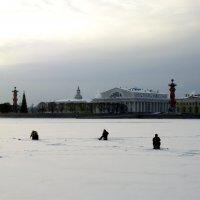 На Неве :: Николай