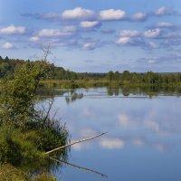Тихий уголок Ижевского пруда :: Владимир Максимов
