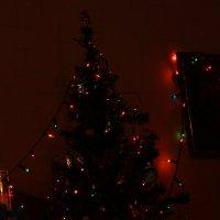 Рождество :: Сергей Касимов