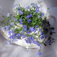 Нежность маленьких цветов :: nika555nika Ирина