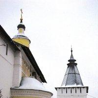 У стен Пафнутьев-Боровского монастыря :: Ольга Иргит