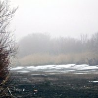 туман :: Татьяна Королёва