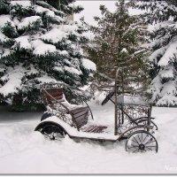 Завалило снегом... :: Лидия (naum.lidiya)