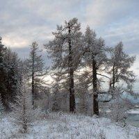 зима... :: Марат Шарипов