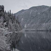 Озеро Рица :: Вера Макарова