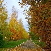 Осень в городе :: Татьяна ***