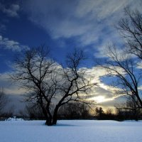 Зимний закат... :: Константин Филякин
