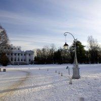 Зима в ЦПКиО :: vic013 Королев