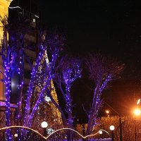 Новогодние улицы :: Светлана SvetNika17