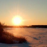 Солнце в праздник Рождества . :: Hаталья Беклова