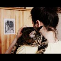 любимая кошка) :: Машуня Орлова