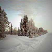 Земля КОМИ :: Виктор Бондаренко