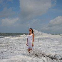 Шри-Ланка :: Владимир KVN