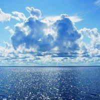 Озеро Белое :: Ольга Чистякова