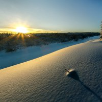Зимняя :: Илья Лисаускас