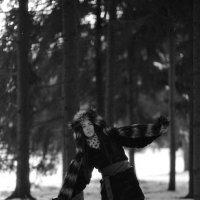 Aequilibris :: Дмитрий Ромашев