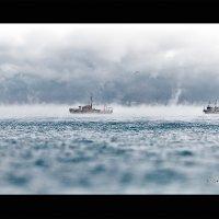 Морской туман в мороз :: Андрей Яшин