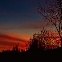 Зимний вечер :: Валерия Азамат