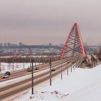 Прогулка по Бугринскому мосту :: Светлана Жуковская