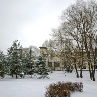Зима :: Анатолий Цыганок