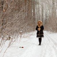 Роза на снегу (04) :: Алексей Волков