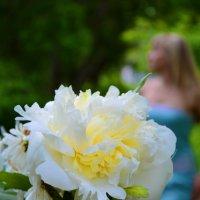 Цветочек :: Nadezhda Pettske