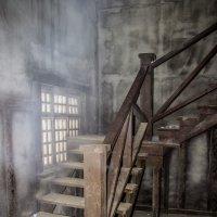Здесь живут привидения :: Elena Ignatova