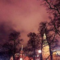 Москва. Кремль.Ночное небо. :: Oksana Osipova