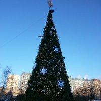 С Новым годом!!! :: Валентина Жукова