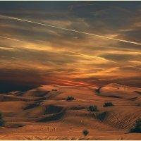 "Вечерело в ""красной"" пустыне Руб-эль-Хали...(ОАЭ). :: Александр Вивчарик"