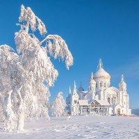 Рождественский наряд :: Владимир Чуприков