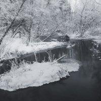 Иневый лес :: Photo-tur.ru