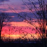 вечернее небо :: Элла Молчанова