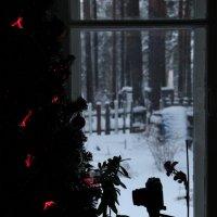 Улыбайтесь, возможно Вас уже сняли... ;) (Старый Новый год) :: Сергей В. Комаров