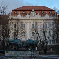 Государственный технический университет(ФГБОУ ВВО) :: Kasatkin Vladislav