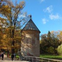 Пиль - башня :: Николай
