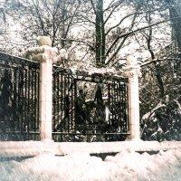 Бульвар в снегу :: Сергей Шруба