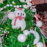 Сова на новогодней елке :: Юрий Стародубцев